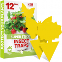 Fruit Fly Traps Indoor (12 Pack)