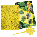 Kensizer 10-Pack Dual-Sided Yellow Sticky Gnat Traps for Indoor/Outdoor