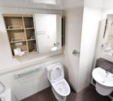 Best Glue for Porcelain Toilet Repair